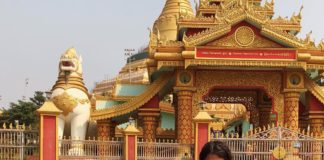 the global vipassana pagoda guide help