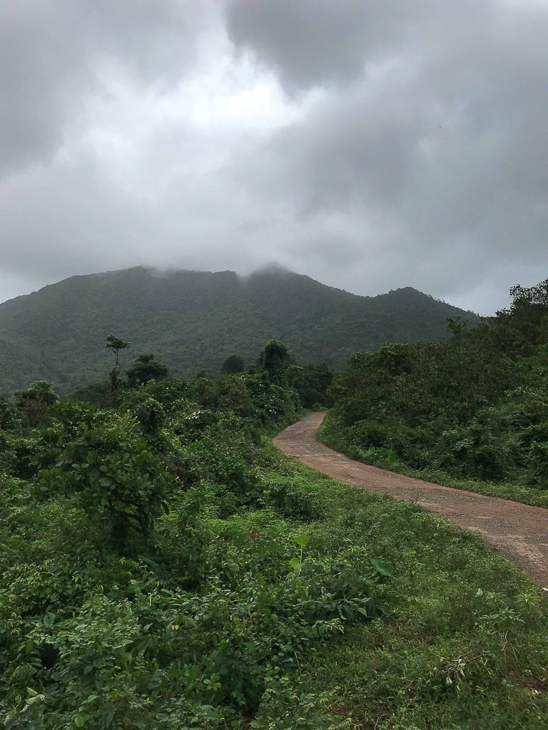 places to visit in south goa netravali wildlife sanctuary-1