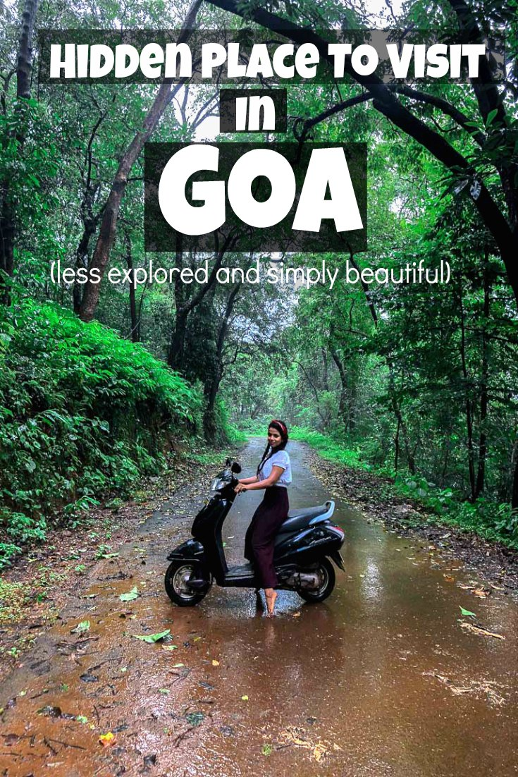 places to visit in south goa netravali wildlife sanctuary travel
